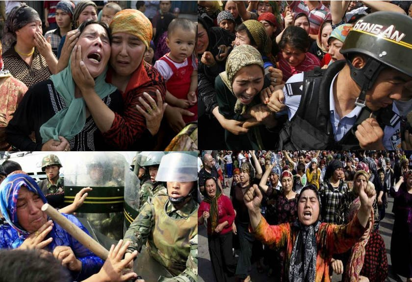 Muslim Dibantai, Perlu Sebuah Perisai