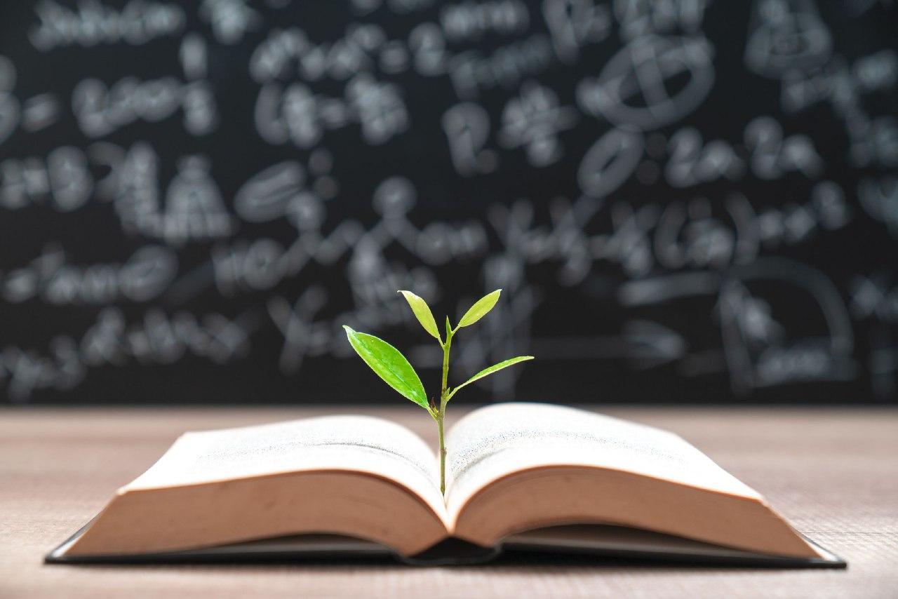 Memilih Proses Pendidikan menuju Kesuksesan Hakiki